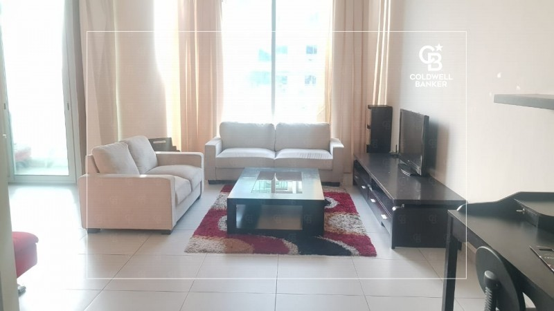 Fully Furnished I Spacious I Chiller Free I Vacant
