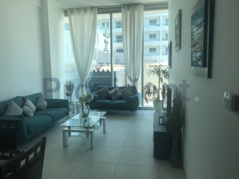 Fully Furnished Ready to Move in 1BR Apt