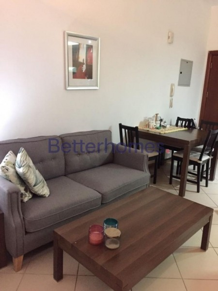 Large Studio Modified to 1 BR   Furnished  Balcony