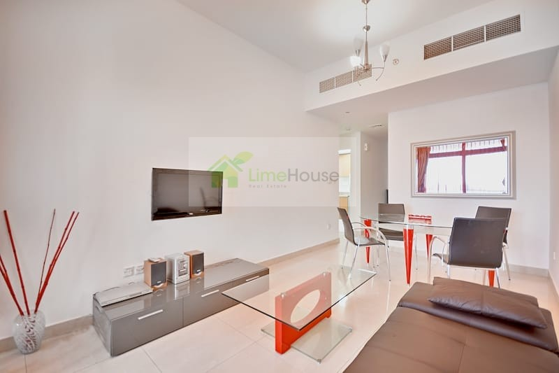 Fully furnished   Chiller Free   1 bedroom