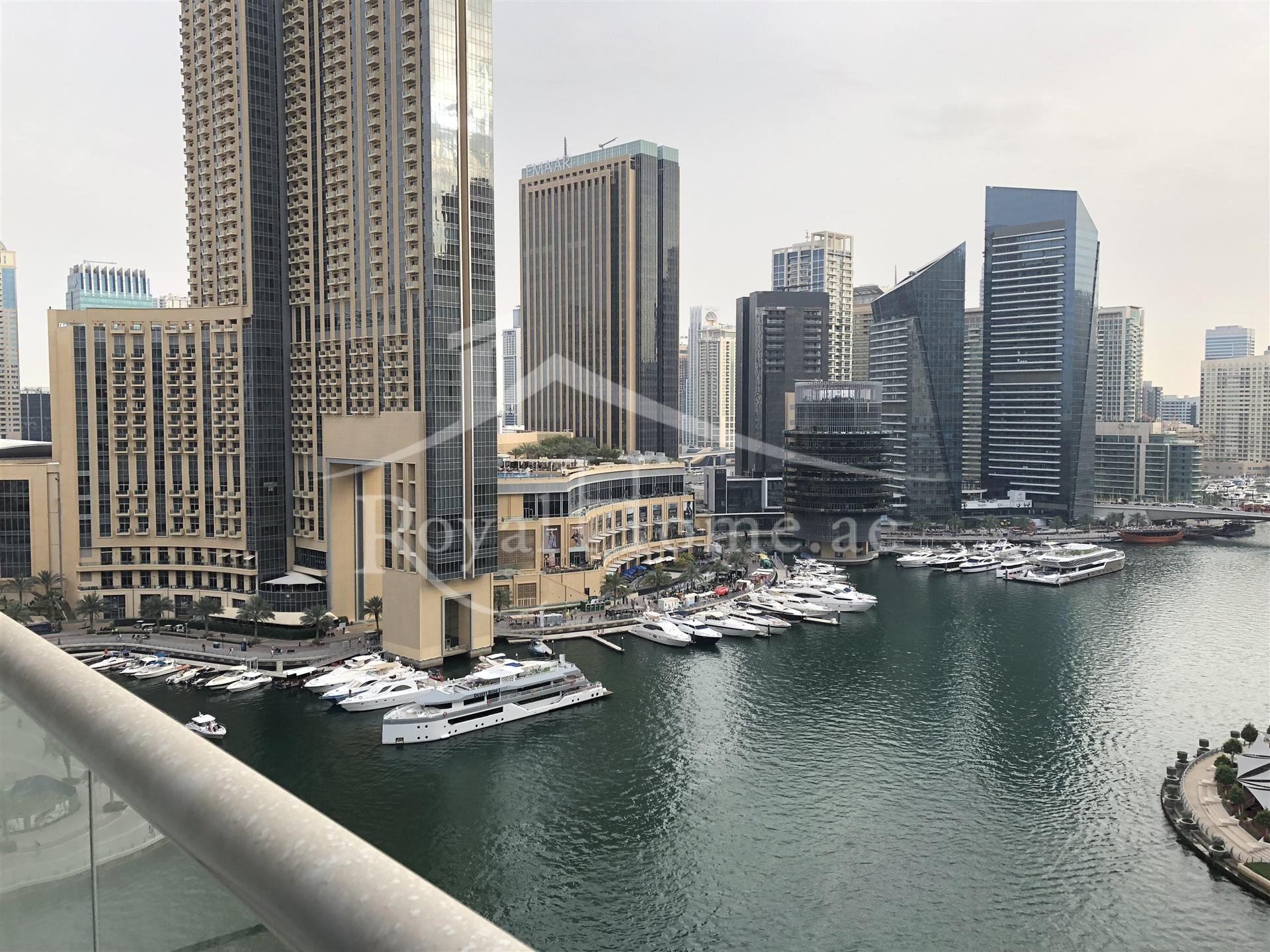 Full Marina View   2 BR + M   2 Balconies