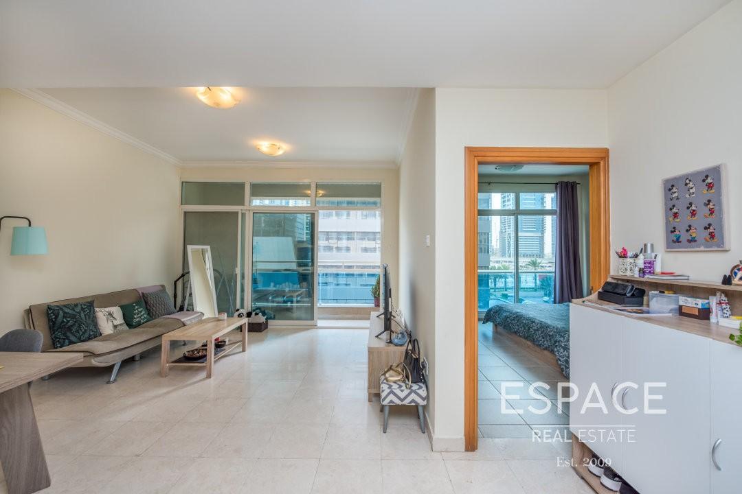 Cozy Outstanding One Bedroom Apartment